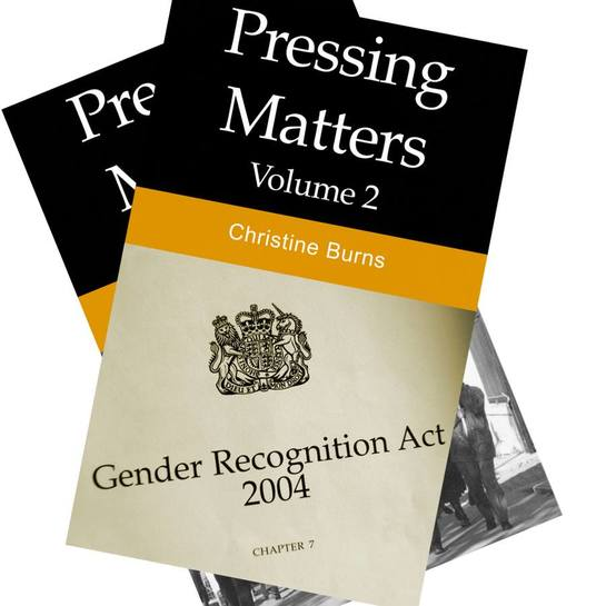 Cover of Christine's books, Pressing Matters vol. 1 and 2